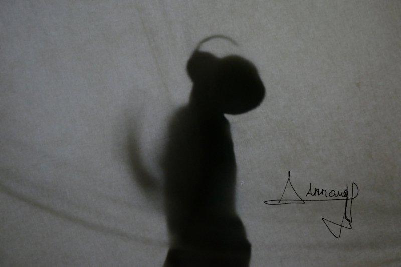 Rhinocéros + signature